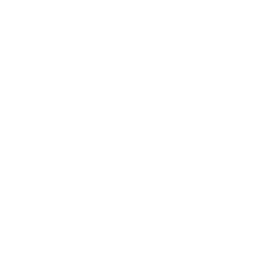 nell-cote-chronicles-logo